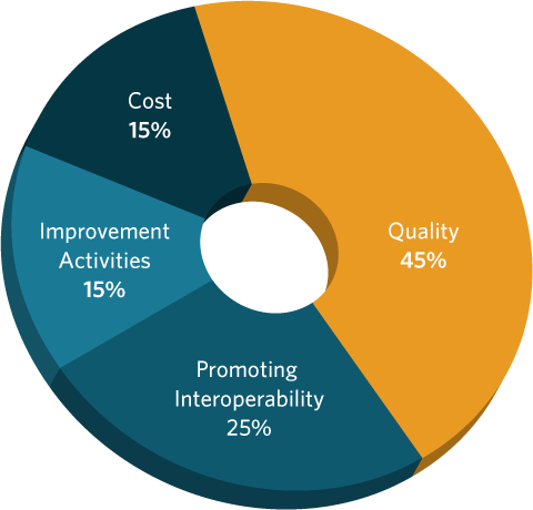 2019 Quality Payment Program Components